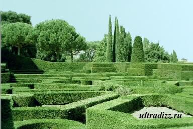 загородный ландшафт