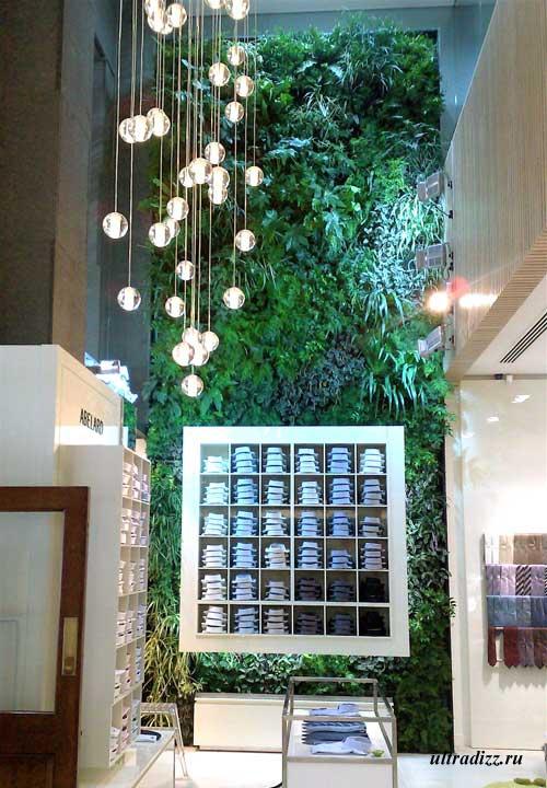 вертикальное озеленение бутика одежды