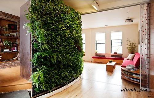 вертикальное озеленение частного дома