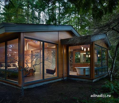 современный частный дом в лесу