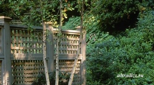 деревянный забор с решетчатым полотном
