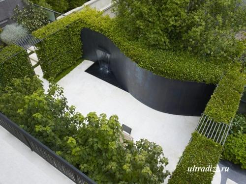 современный сад в городском дворе