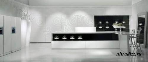 черно-белый цвет в интерьере кухни 8