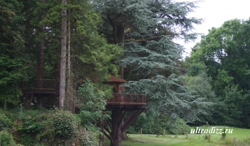 игровой дом на дереве в частном дворе