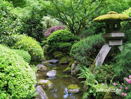 ландшафтный дизайн в японском стиле 8