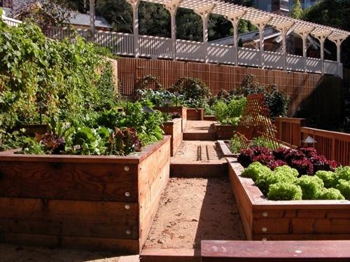 дизайн двора с декоративным огородом