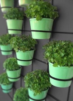 цветочное кашпо для вертикального озеленения