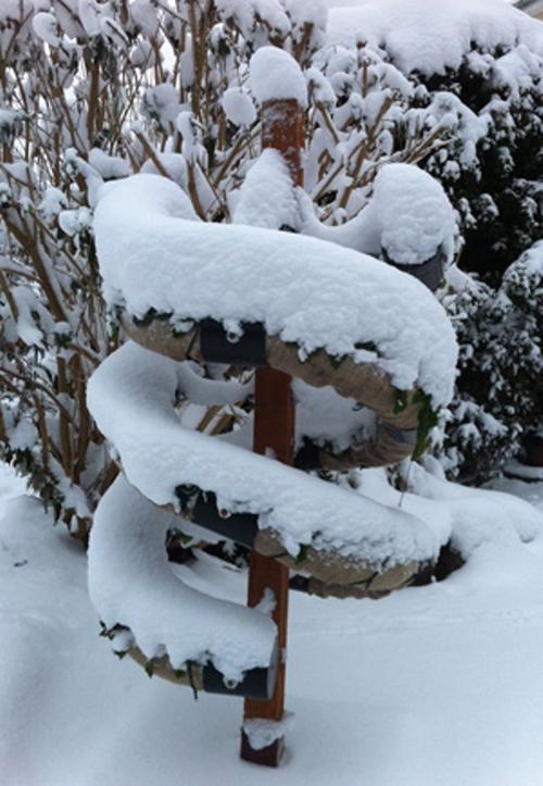 декоративный огород зимой