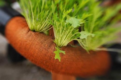 отверстия в компактном огороде для наземной части растений