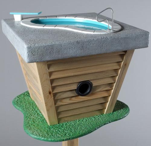 уникальный скворечник с бассейном на крыше