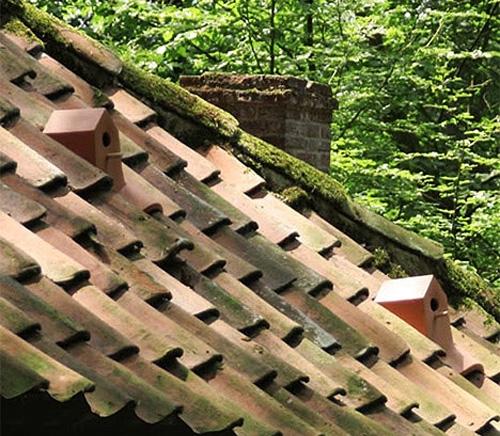 черепичная крыша с керамическими скворечниками