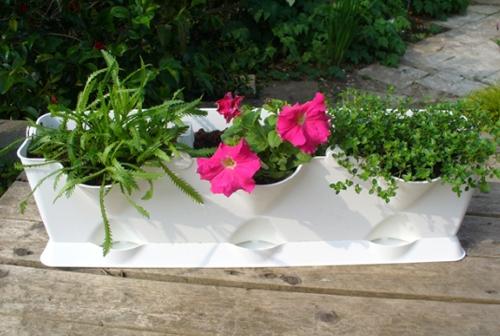 цветочный модуль для вертикального сада