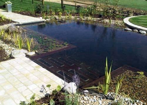 натуральный бассейн с естественной биоочисткой
