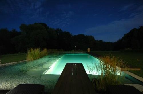 натуральный бассейн с подсветкой