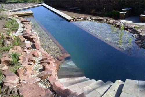 дизайн натуральных бассейнов 2