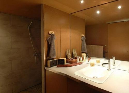 жилой гараж дизайн ванной
