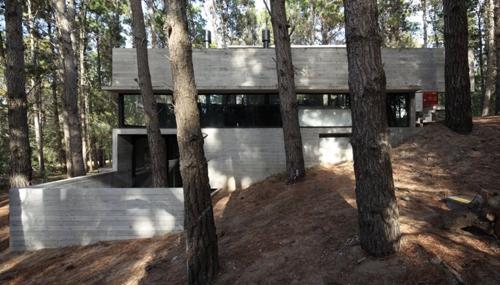 экстерьер монолитного дома в лесу