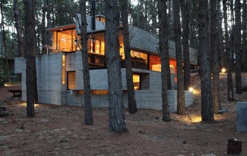 фасад монолитного дома в лесу