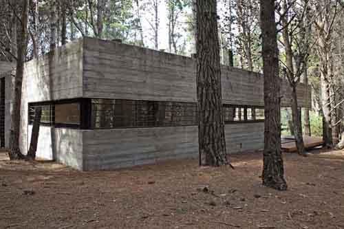 частный монолитный дом в лесу