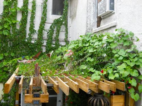навес для растений