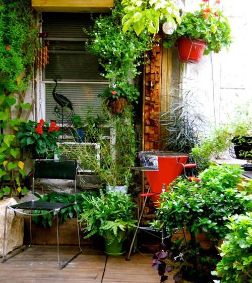 небольшой сад на крыше дома