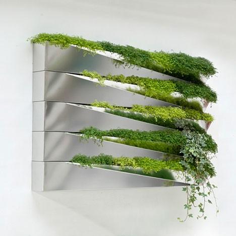 зеркало с живыми растениями