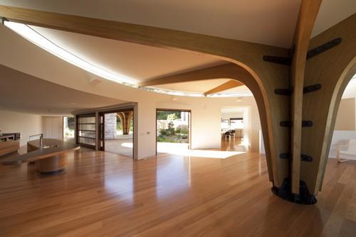 необычный проект частного дома