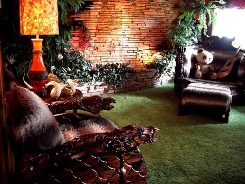 домашние растения в декорациях под джунгли