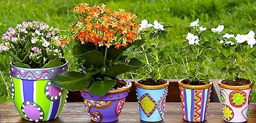 оригинальные горшки для домашних растений