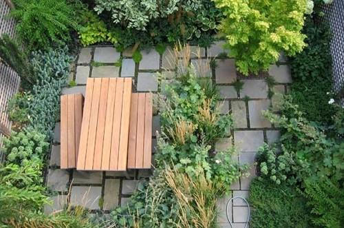 мини сад на заднем дворе