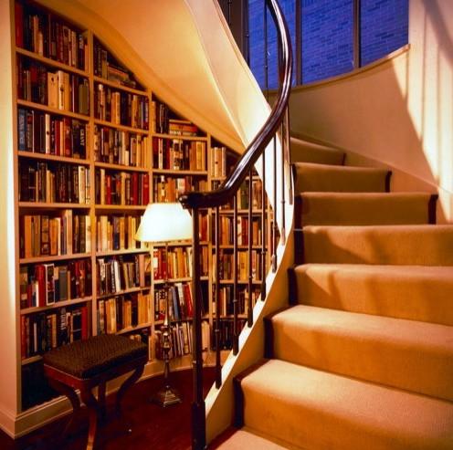 библиотека под лестницей