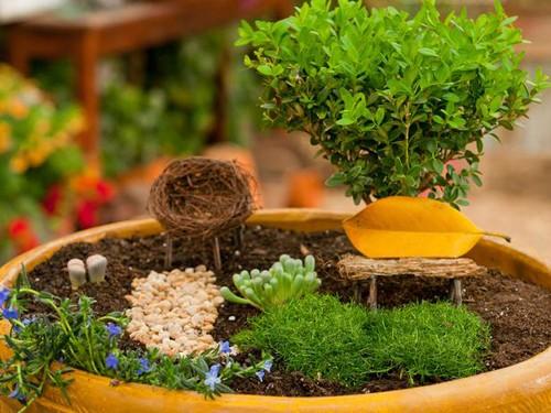 миниатюрный сад фей