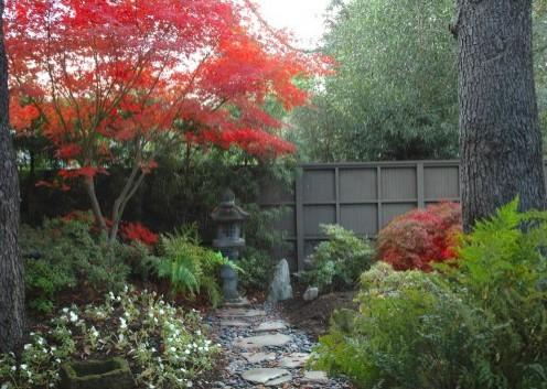 красная листва в ландшафтном дизайне двора