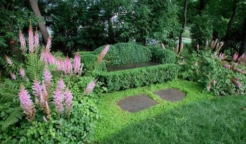 садовая скамейка из стриженной живой изгороди