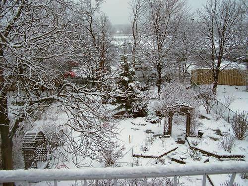 зимний дизайн сада