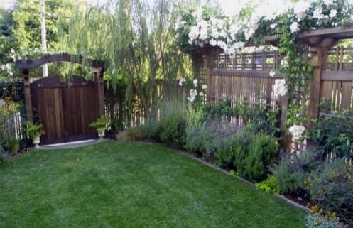 высокий забор для вьющихся растений