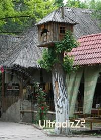 декоративная побелка деревьев