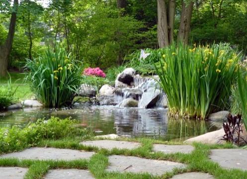 оформление садового участка в стиле фьюжн