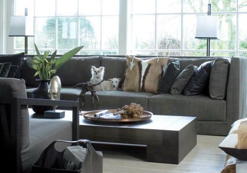мягкая мебель в интерьере с собаками