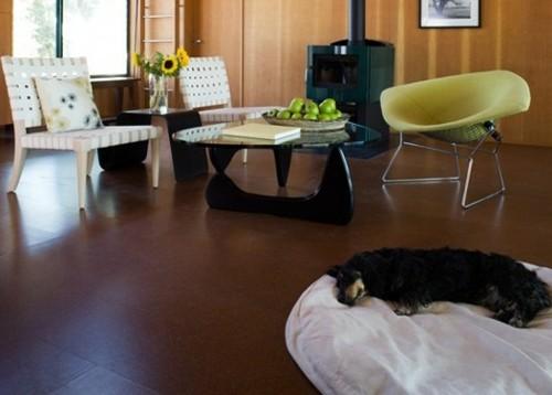 место для собаки в гостиной