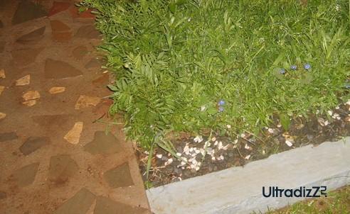 комбинированная садовая дорожка из бетона и камня