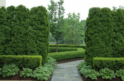 фактурные контрасты в дизайне сада