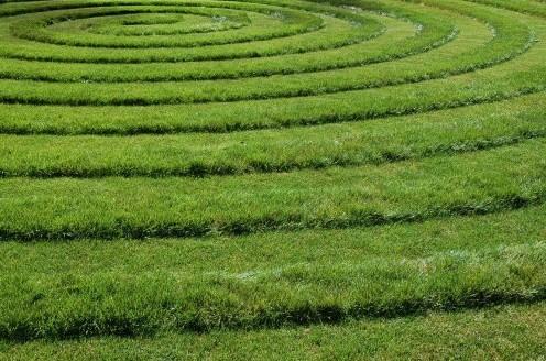 оригинальный газон