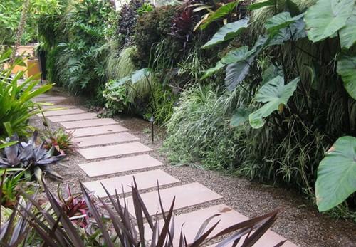 красивый сад без цветов