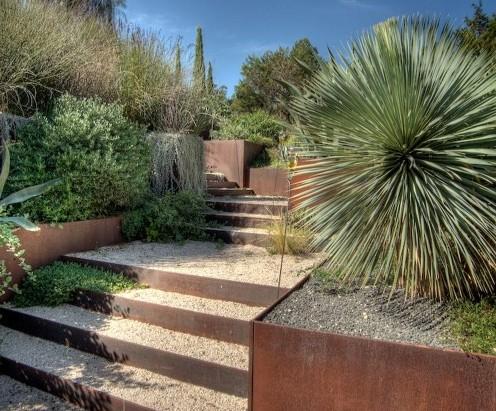 растения скульптурной формы в ландшафтном дизайне