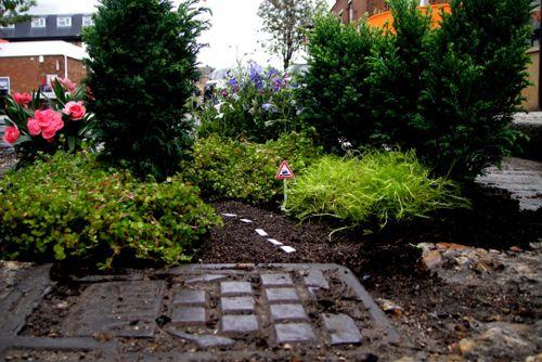 миниатюрный сад Стива Уина