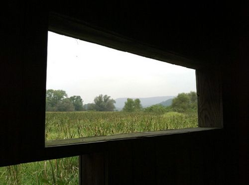 панорамные окна в ландшафтном дизайне