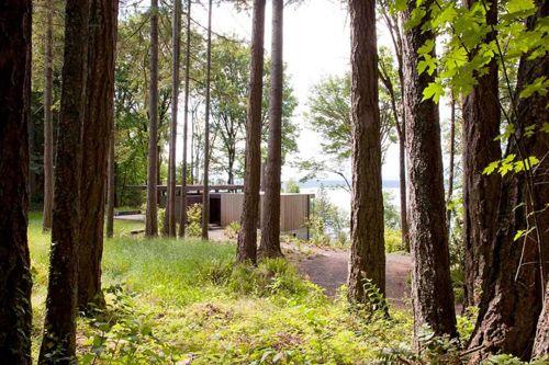 минималистический дизайн частного домика в лесу