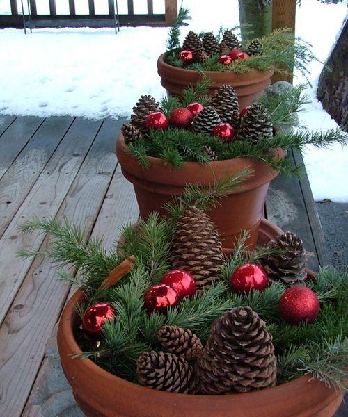новогодние композиции в цветочных вазонах
