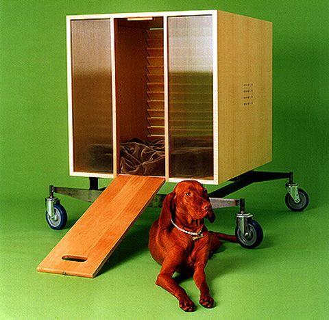мобильная собачья будка на колесах
